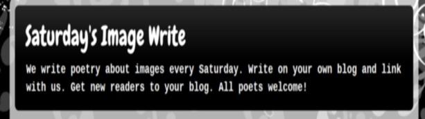 Saturday's Image Write