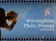 Sue Vincent's #writephoto icon