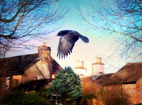 Message — #writephoto Messenger
