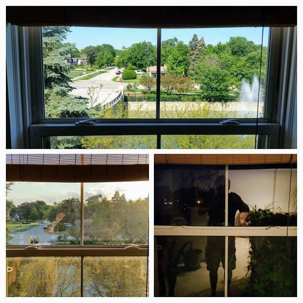 Same Window Different Views