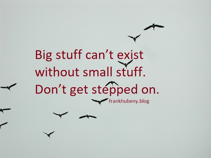 Big stuff can't exist without small stuff. Don't get stepped on.