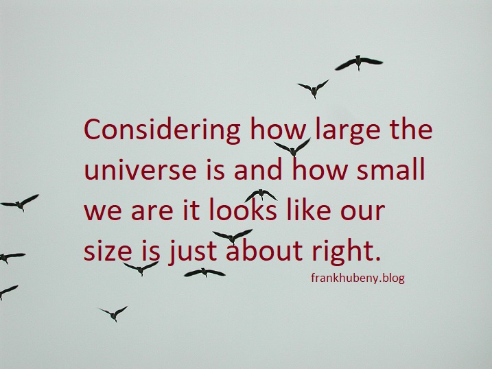 Considering how large the universe is and how small we are it looks like our size is just about right