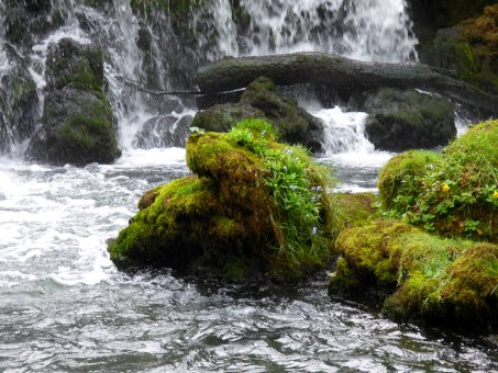The Costs of Love — #writephoto