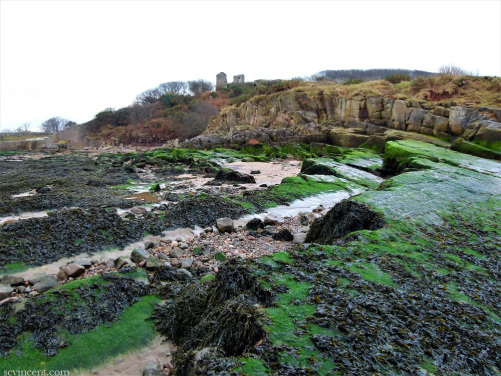 Raiding the Castle on the Rocky Coast –#writephoto