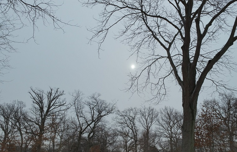 Sun Through Overcast Sky