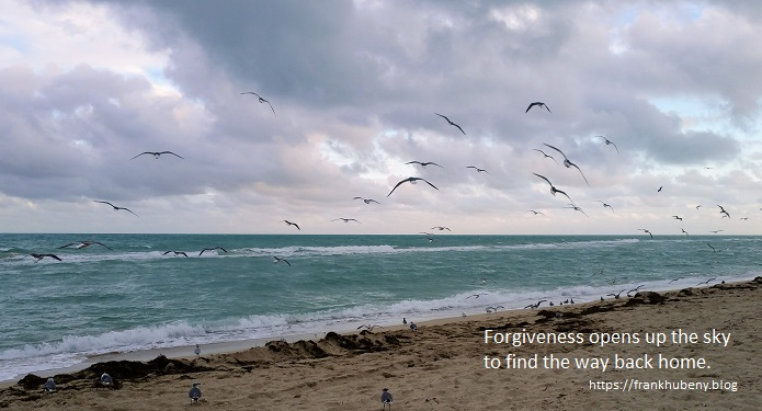 Forgiveness opens up the sky to find the way back home.