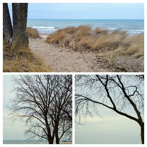 Lake Michigan from Gillson Park