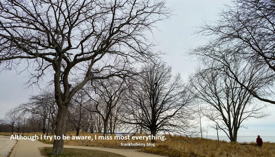 One-Liner Wednesday —Awareness