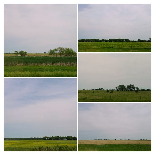 Iowa from Interstate 80