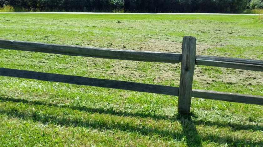 Fence and Field After Mowing