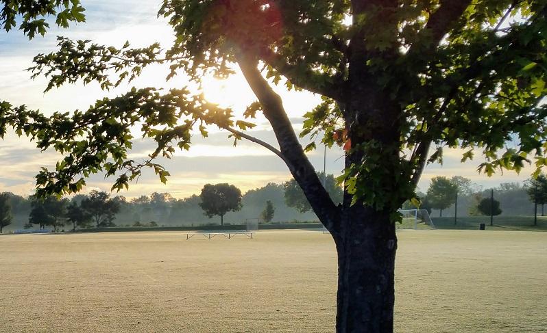 Soccer Field in the Morning