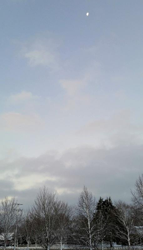 Moon in Blue Gray Sky