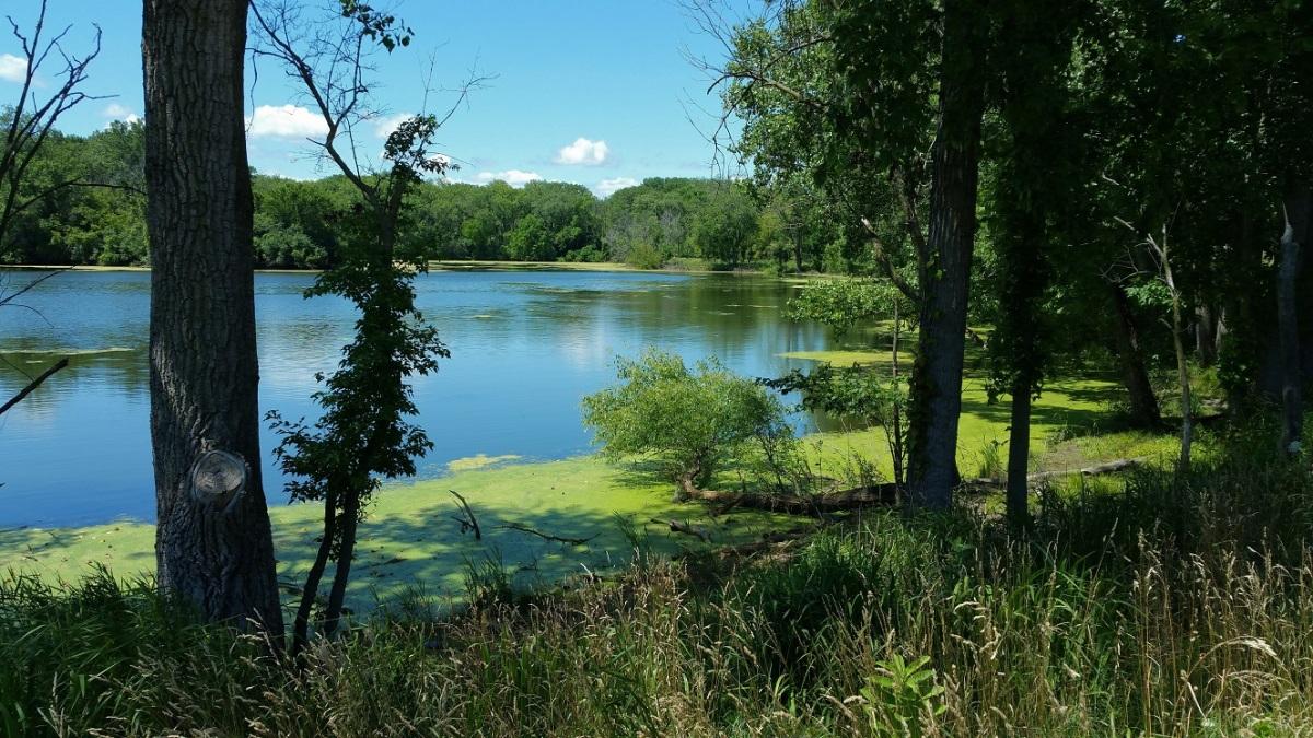 Slokie Lagoons