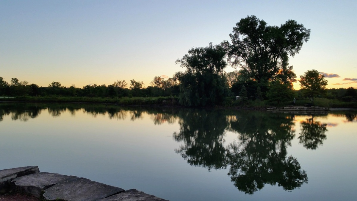 Sunrise Over Pond