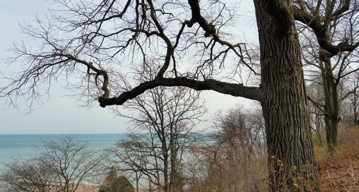 Overlooking Lake Michigan