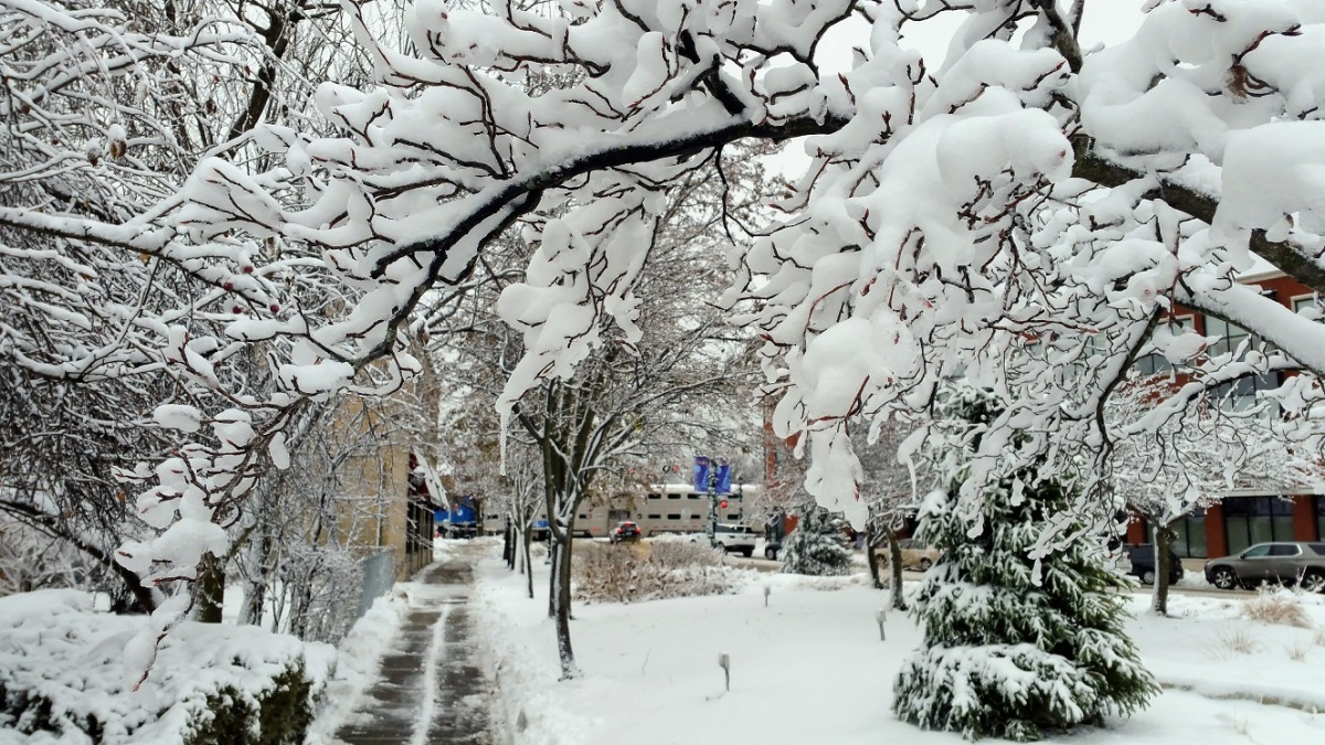 Archway of Snow