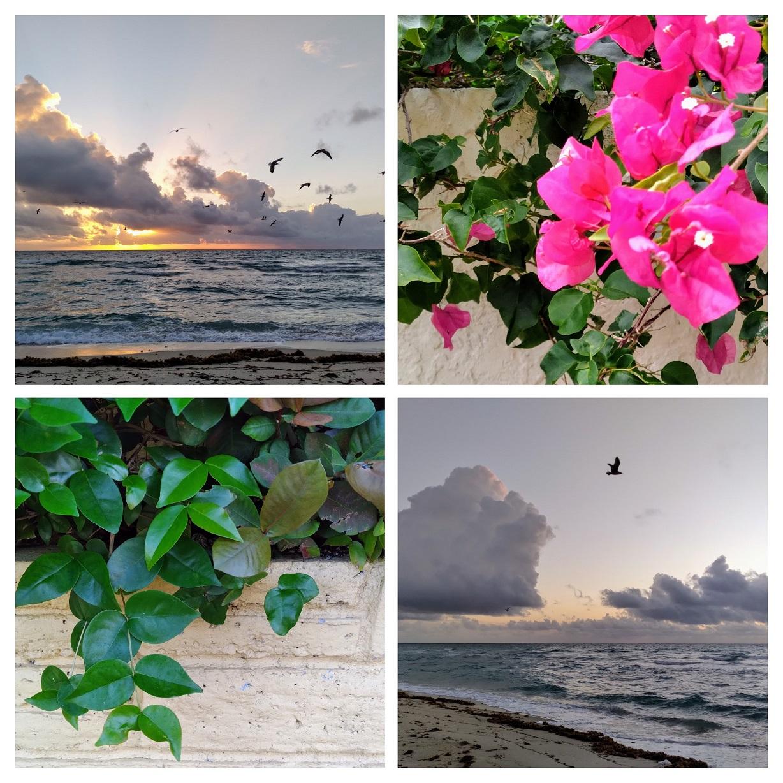 Collage Miami Beach